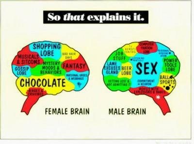 braingen.jpg