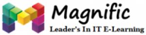 magnific logo.png